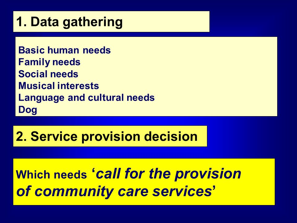 1. Data gathering Basic human needs Family needs Social needs Musical interests Language and cultural needs Dog 2. Service provision decision Which ne