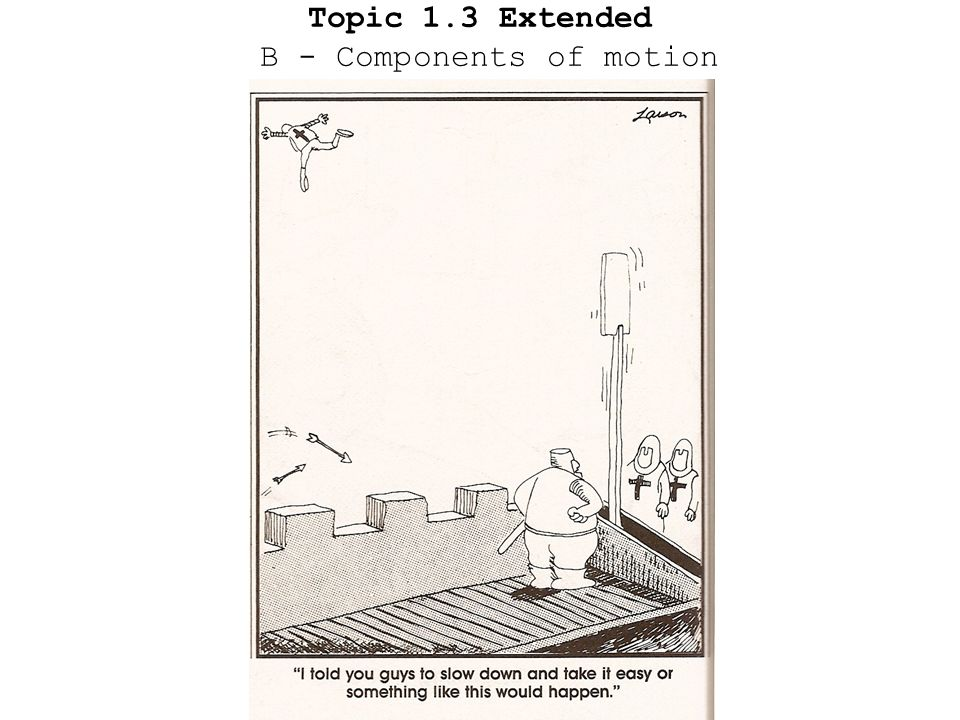 Topic 1.3 Extended B - Components of motion