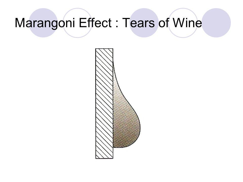 Marangoni Effect : Tears of Wine