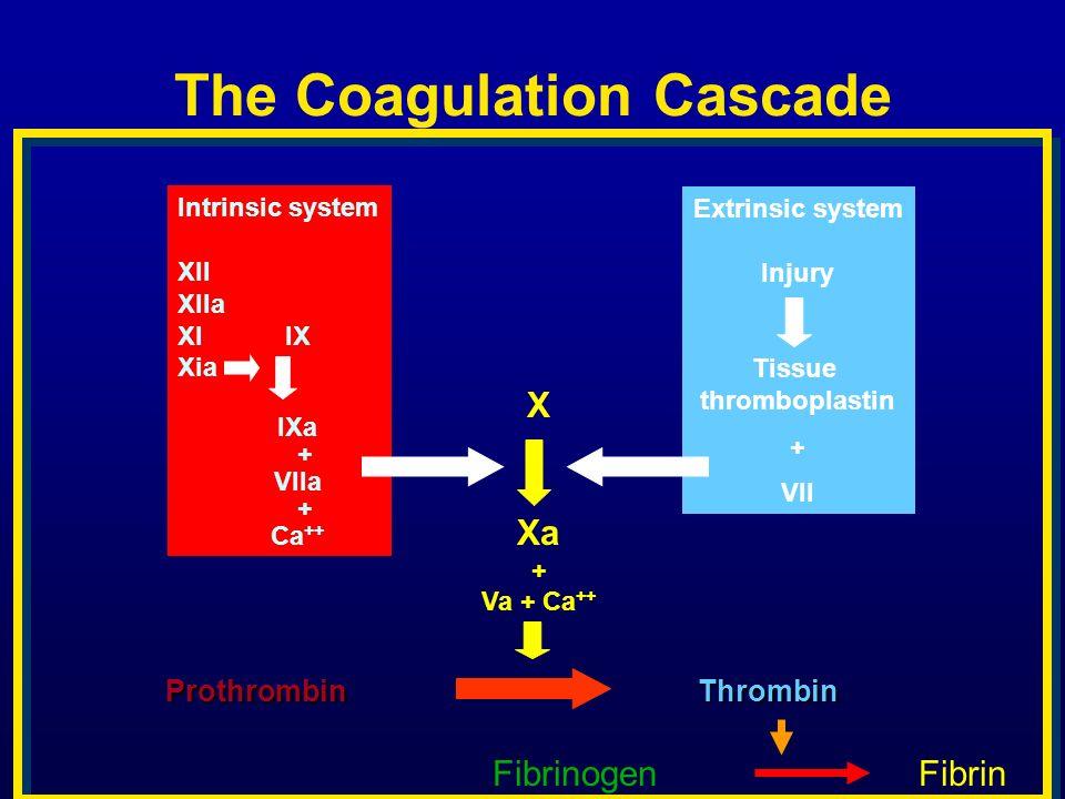 The Coagulation Cascade X Xa + Va + Ca ++ Intrinsic system XII XIIa XIIX Xia IXa + VIIa + Ca ++ Extrinsic system Injury Tissue thromboplastin + VII Pr