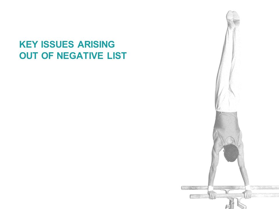 KEY ISSUES ARISING OUT OF NEGATIVE LIST