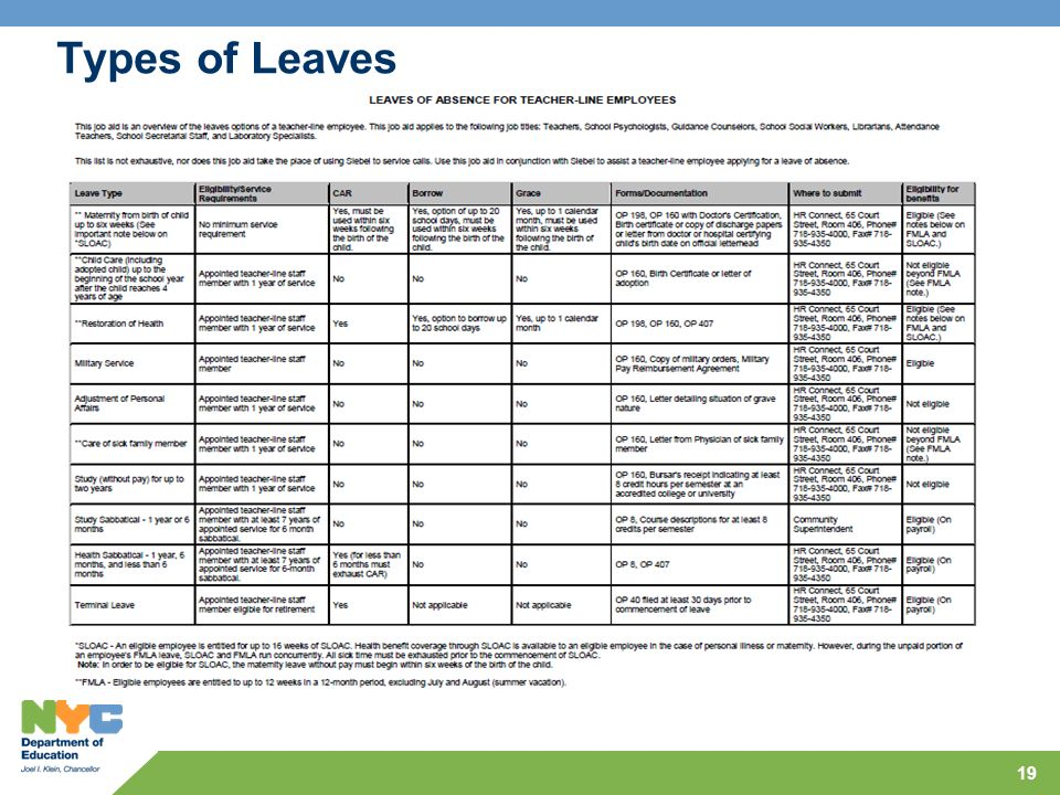 Types of Leaves 19