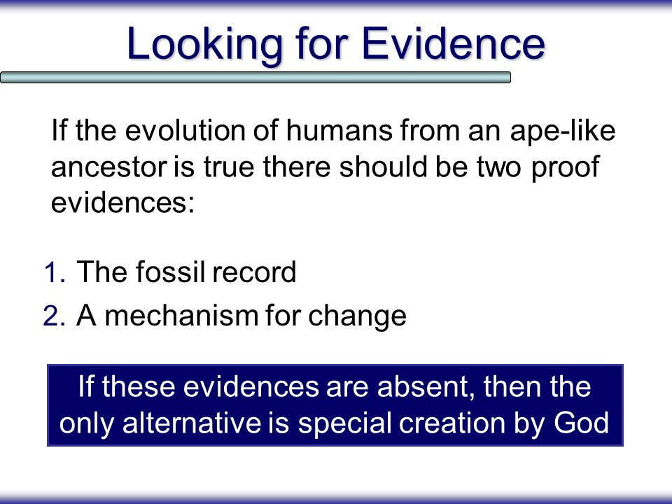 Looking for Evidence 1. The fossil record 2. A mechanism for change If the evolution of humans from an ape-like ancestor is true there should be two p
