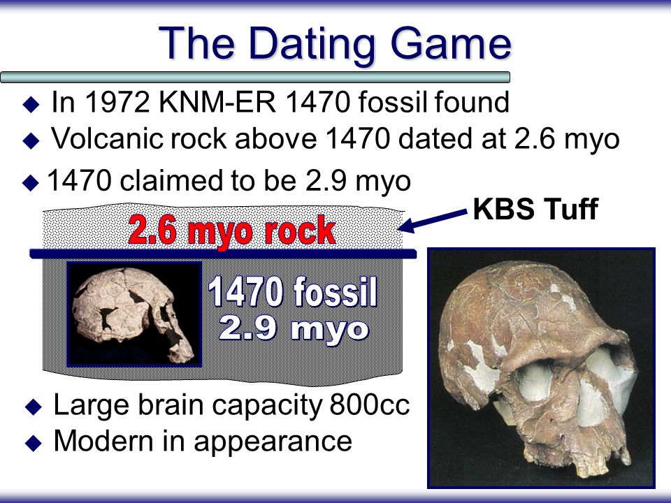 The Dating Game 1470 claimed to be 2.9 myo In 1972 KNM-ER 1470 fossil found Volcanic rock above 1470 dated at 2.6 myo Large brain capacity 800cc Moder