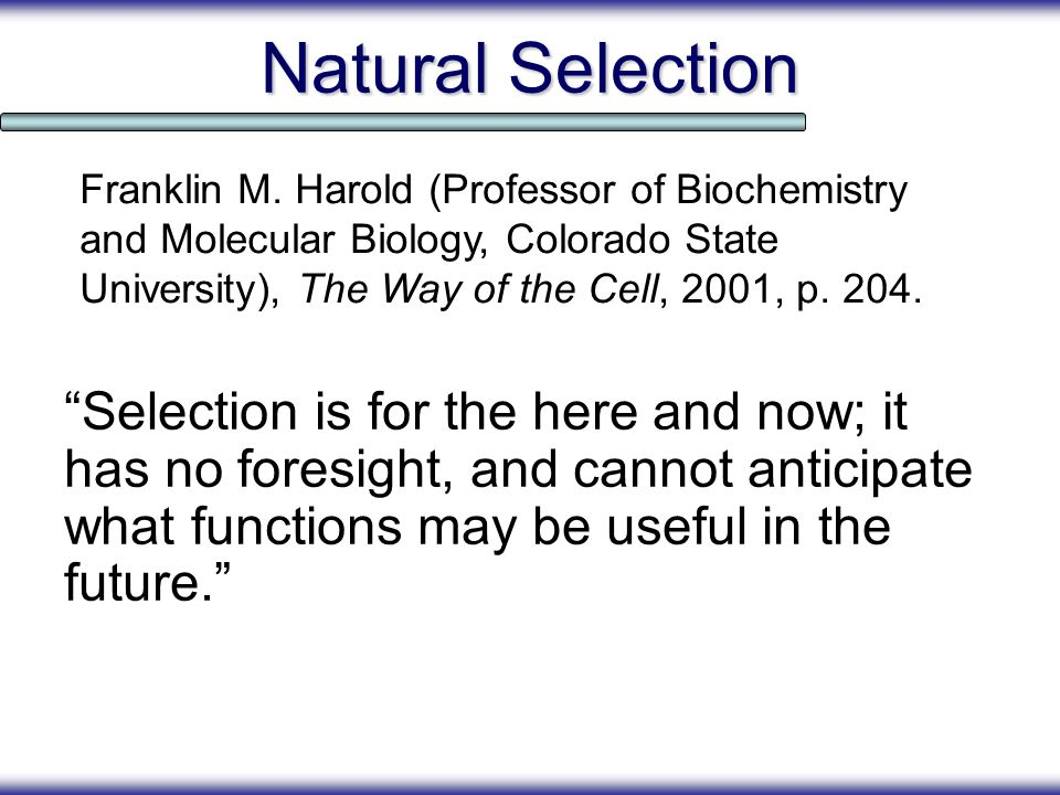 Natural Selection Selection is for the here and now; it has no foresight, and cannot anticipate what functions may be useful in the future. Franklin M