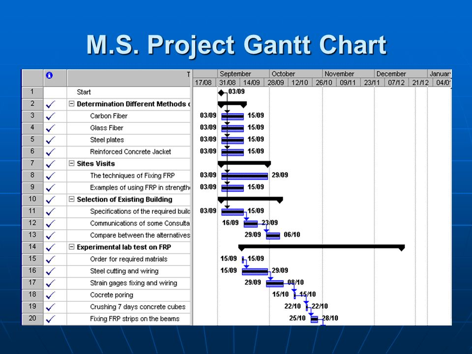M.S. Project Gantt Chart