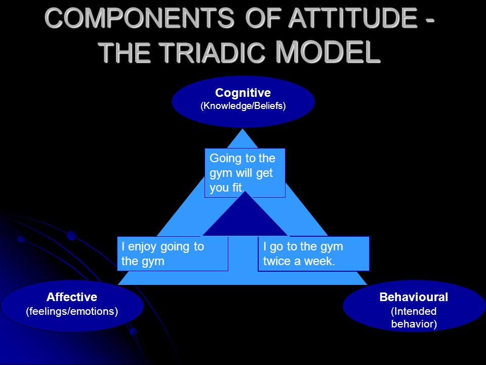 COMPONENTS OF ATTITUDE - THE TRIADIC MODEL Affective (feelings/emotions) Cognitive (Knowledge/Beliefs) Behavioural (Intended behavior) Going to the gy