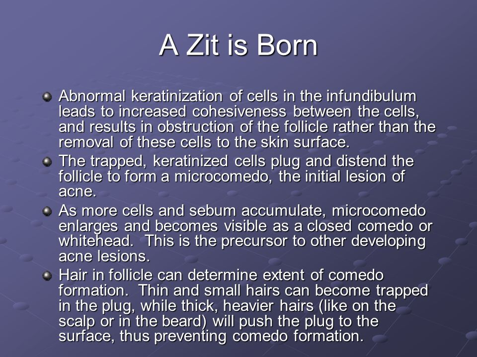 A Zit is Born Abnormal keratinization of cells in the infundibulum leads to increased cohesiveness between the cells, and results in obstruction of th