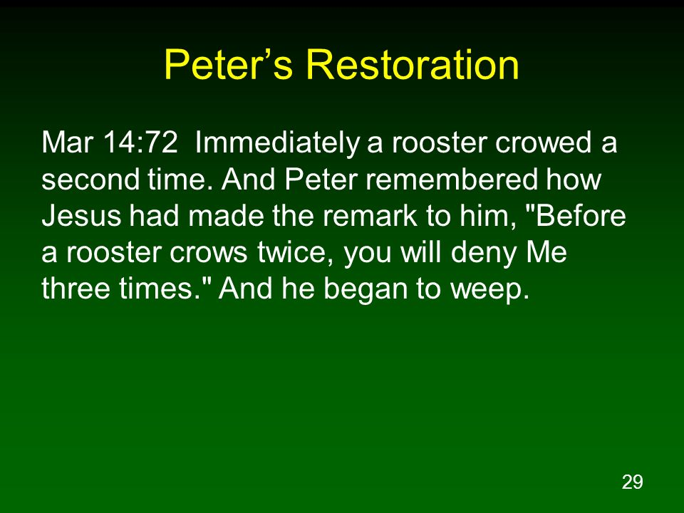 29 Peters Restoration Mar 14:72 Immediately a rooster crowed a second time. And Peter remembered how Jesus had made the remark to him,