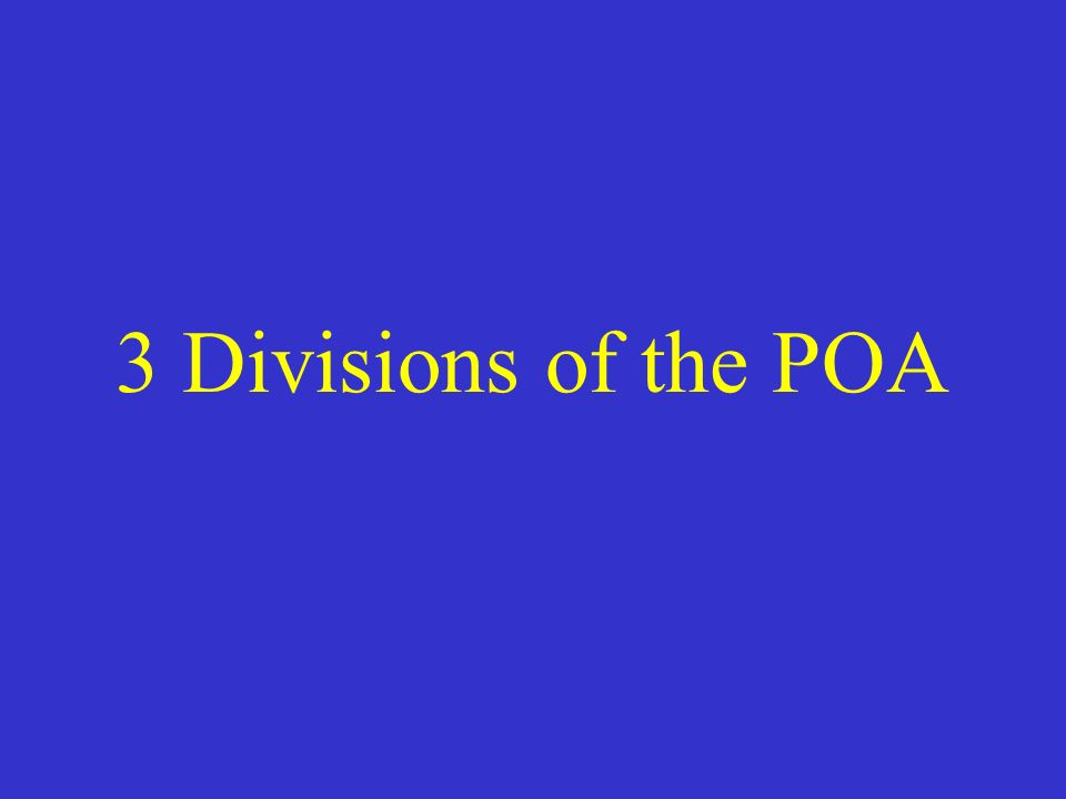 3 Divisions of the POA