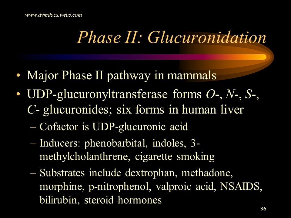 www.dvmdocs.webs.com 36 Phase II: Glucuronidation Major Phase II pathway in mammals UDP-glucuronyltransferase forms O-, N-, S-, C- glucuronides; six f