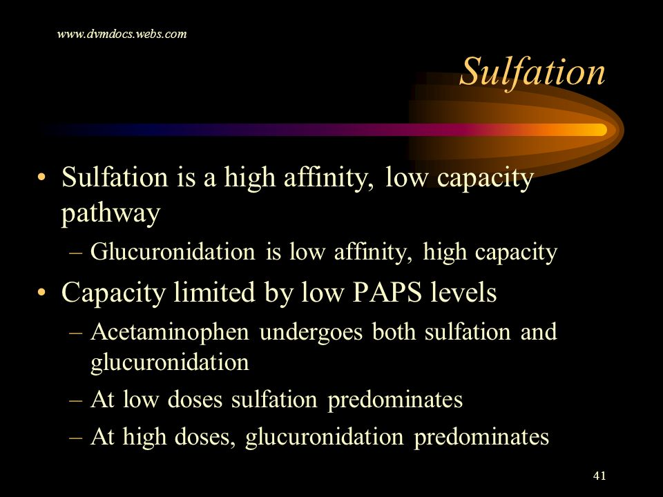 www.dvmdocs.webs.com 41 Sulfation is a high affinity, low capacity pathway –Glucuronidation is low affinity, high capacity Capacity limited by low PAP