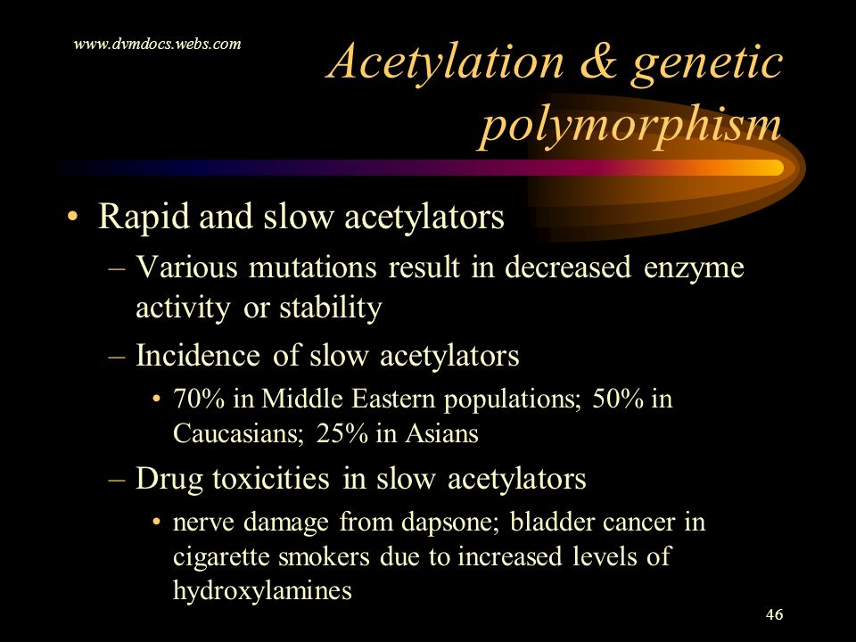 www.dvmdocs.webs.com 46 Rapid and slow acetylators –Various mutations result in decreased enzyme activity or stability –Incidence of slow acetylators