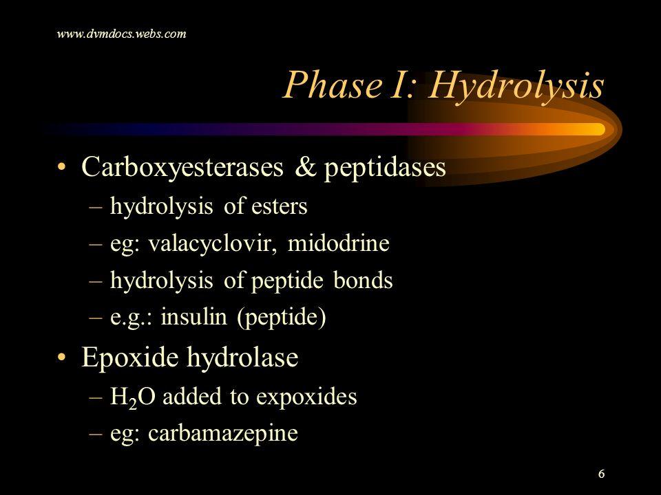 www.dvmdocs.webs.com 6 Phase I: Hydrolysis Carboxyesterases & peptidases –hydrolysis of esters –eg: valacyclovir, midodrine –hydrolysis of peptide bon