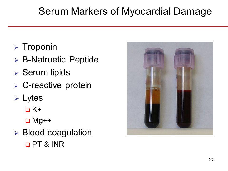 23 Serum Markers of Myocardial Damage Troponin B-Natruetic Peptide Serum lipids C-reactive protein Lytes K+ Mg++ Blood coagulation PT & INR