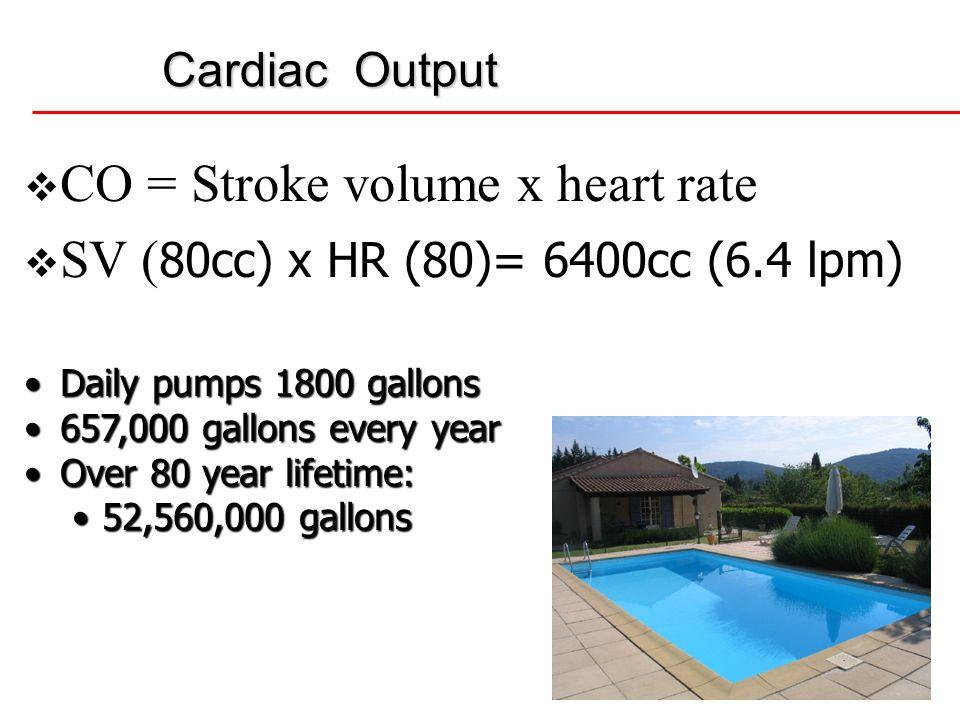 8 Cardiac Output CO = Stroke volume x heart rate SV ( 80cc) x HR (80)= 6400cc (6.4 lpm) Daily pumps 1800 gallonsDaily pumps 1800 gallons 657,000 gallo