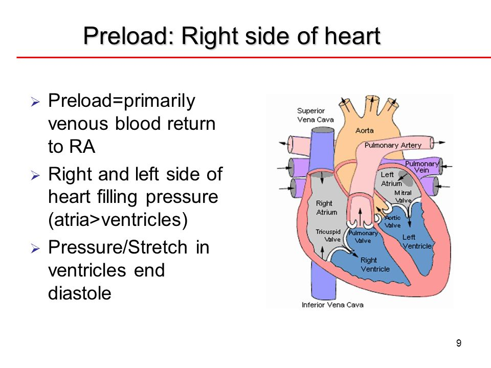 9 Preload: Right side of heart Preload=primarily venous blood return to RA Right and left side of heart filling pressure (atria>ventricles) Pressure/S