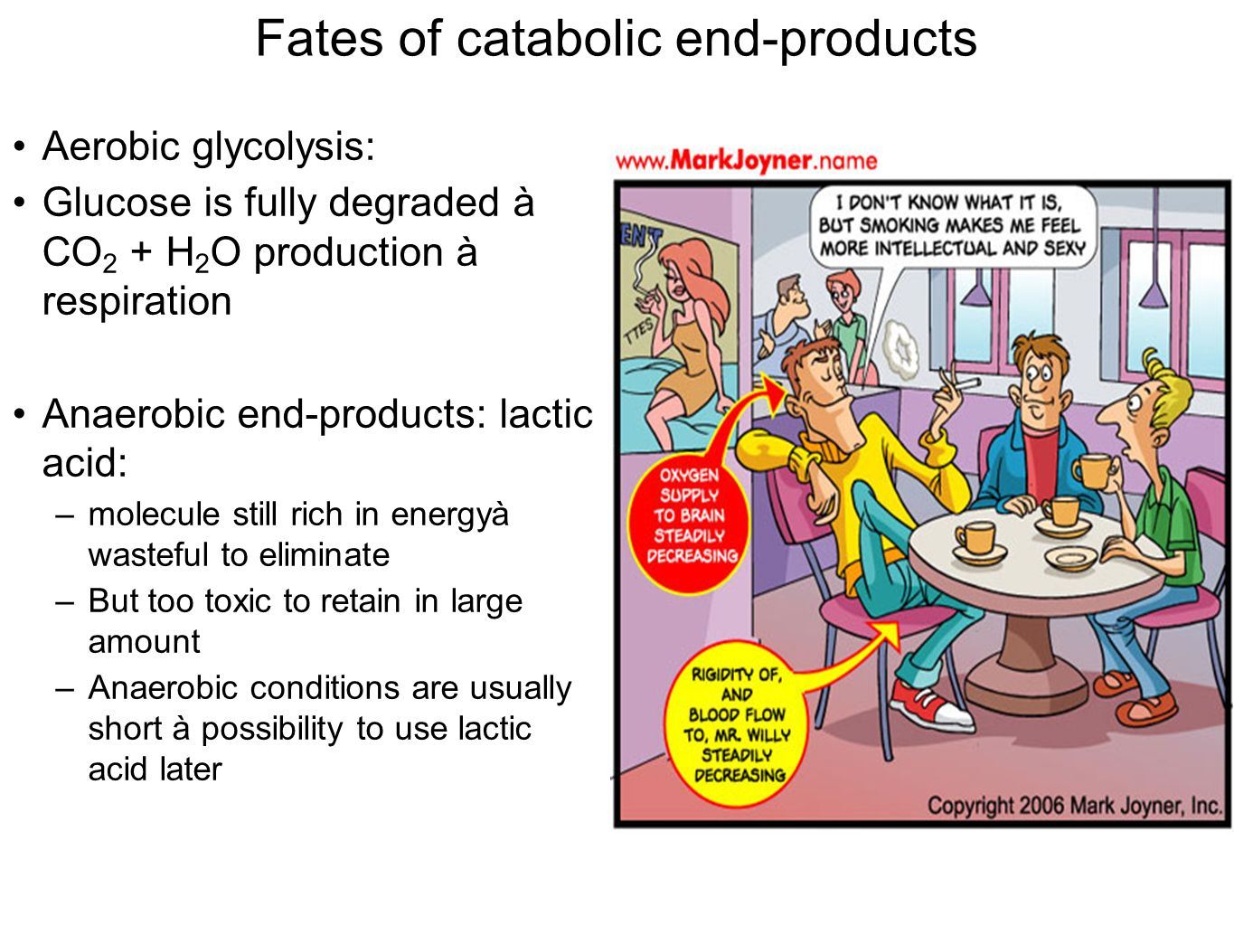 Fates of catabolic end-products Aerobic glycolysis: Glucose is fully degraded à CO 2 + H 2 O production à respiration Anaerobic end-products: lactic acid: –molecule still rich in energyà wasteful to eliminate –But too toxic to retain in large amount –Anaerobic conditions are usually short à possibility to use lactic acid later