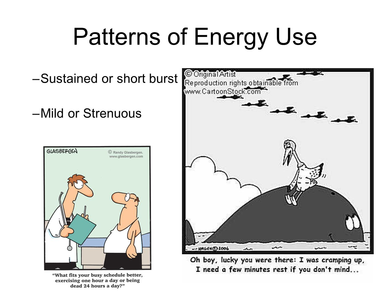 Patterns of Energy Use –Sustained or short burst –Mild or Strenuous