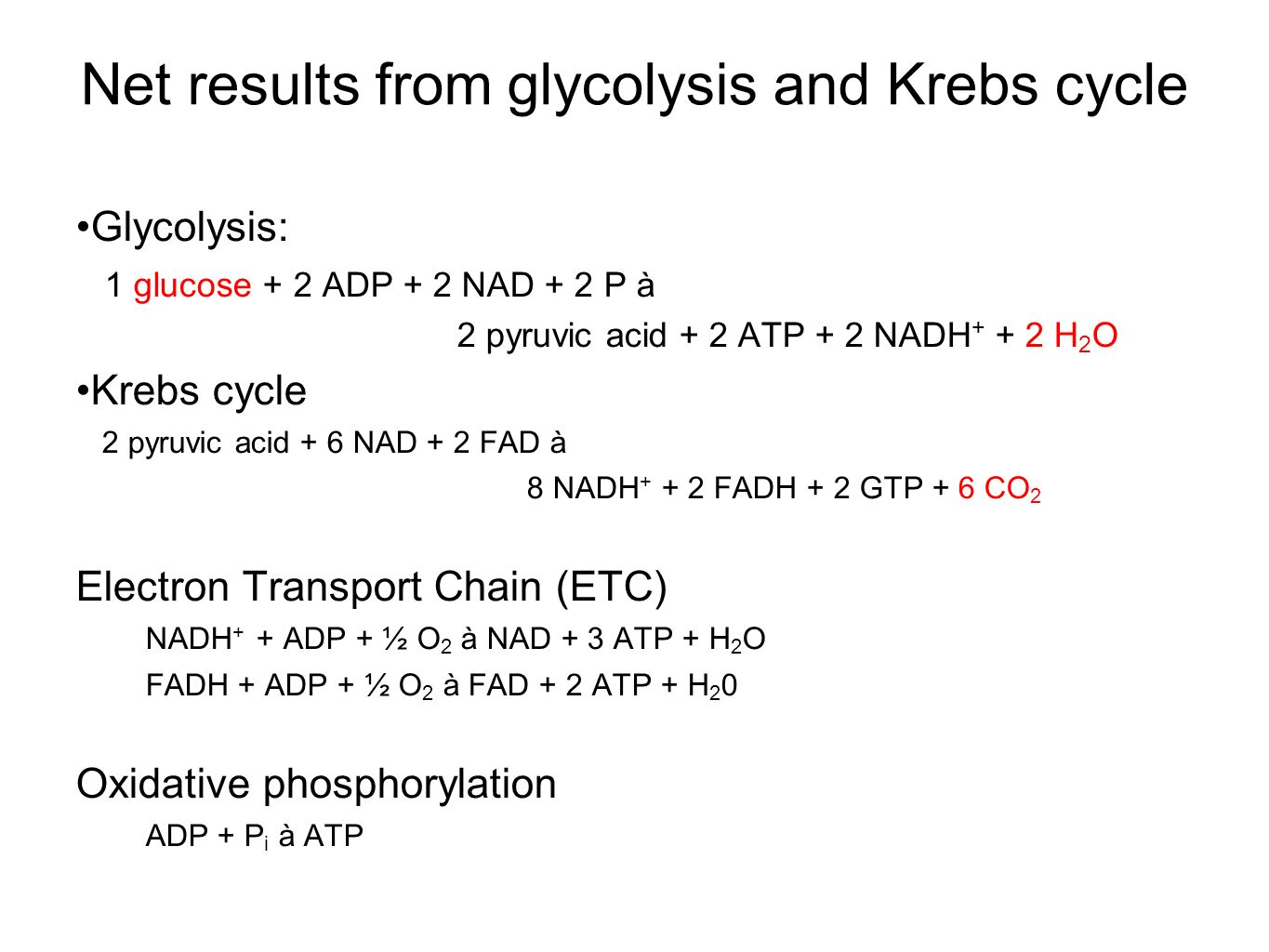Net results from glycolysis and Krebs cycle Glycolysis: 1 glucose + 2 ADP + 2 NAD + 2 P à 2 pyruvic acid + 2 ATP + 2 NADH + + 2 H 2 O Krebs cycle 2 pyruvic acid + 6 NAD + 2 FAD à 8 NADH + + 2 FADH + 2 GTP + 6 CO 2 Electron Transport Chain (ETC) NADH + + ADP + ½ O 2 à NAD + 3 ATP + H 2 O FADH + ADP + ½ O 2 à FAD + 2 ATP + H 2 0 Oxidative phosphorylation ADP + P i à ATP