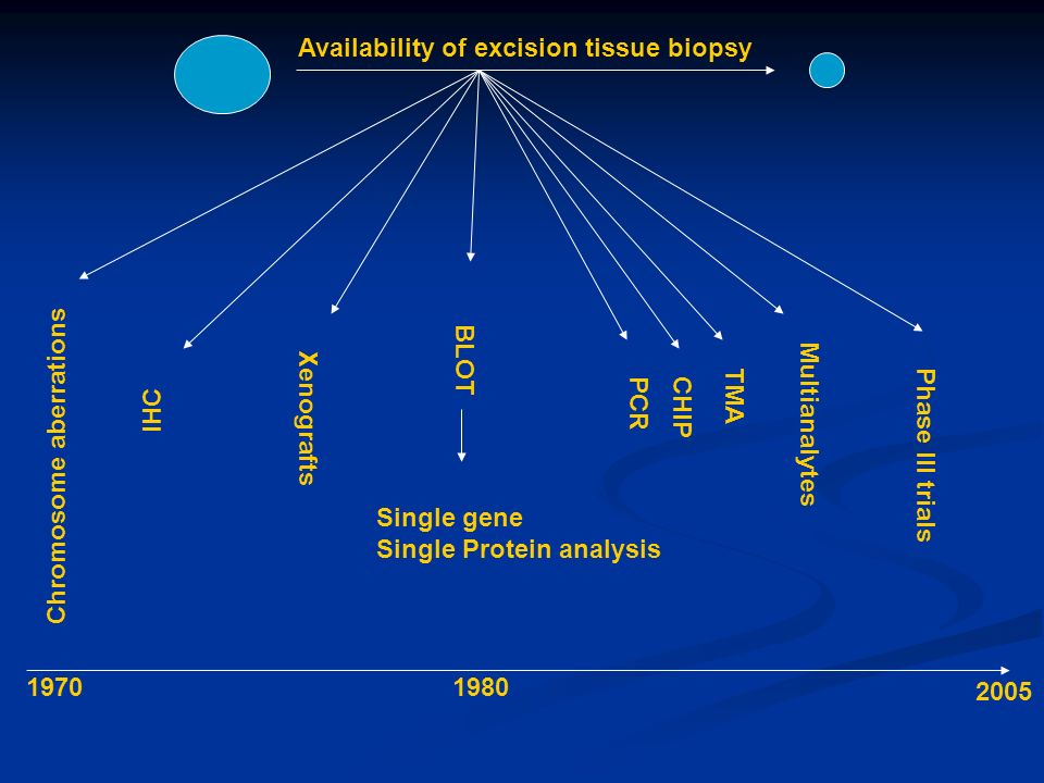 BLOT Single gene Single Protein analysis IHC Chromosome aberrations Xenografts PCR CHIP Multianalytes Availability of excision tissue biopsy Phase III