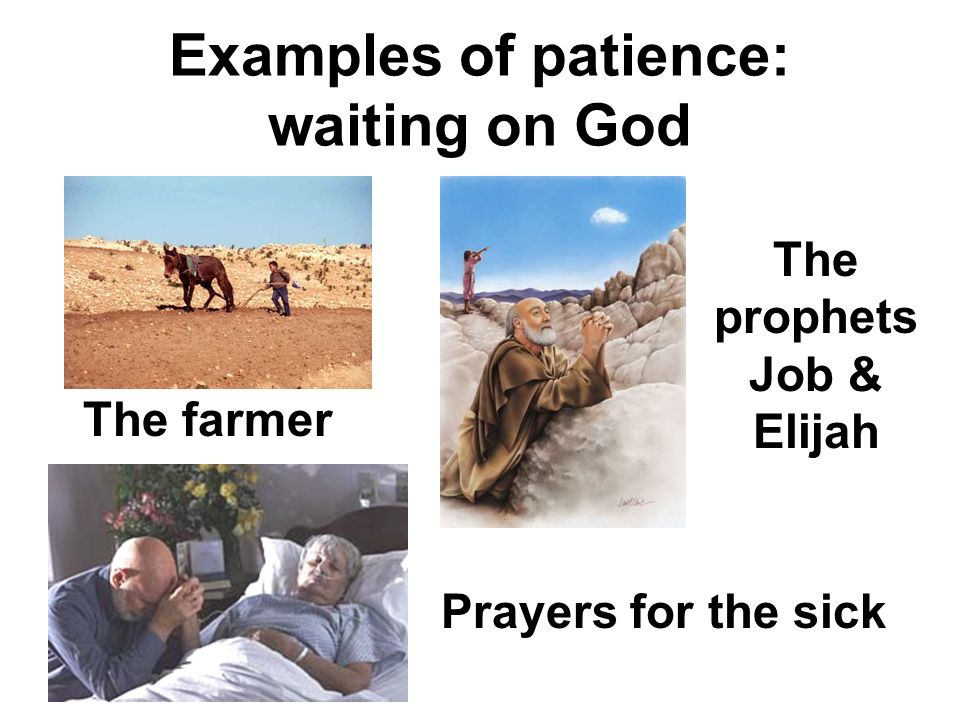 Examples of patience: waiting on God The prophets Job & Elijah The farmer Prayers for the sick