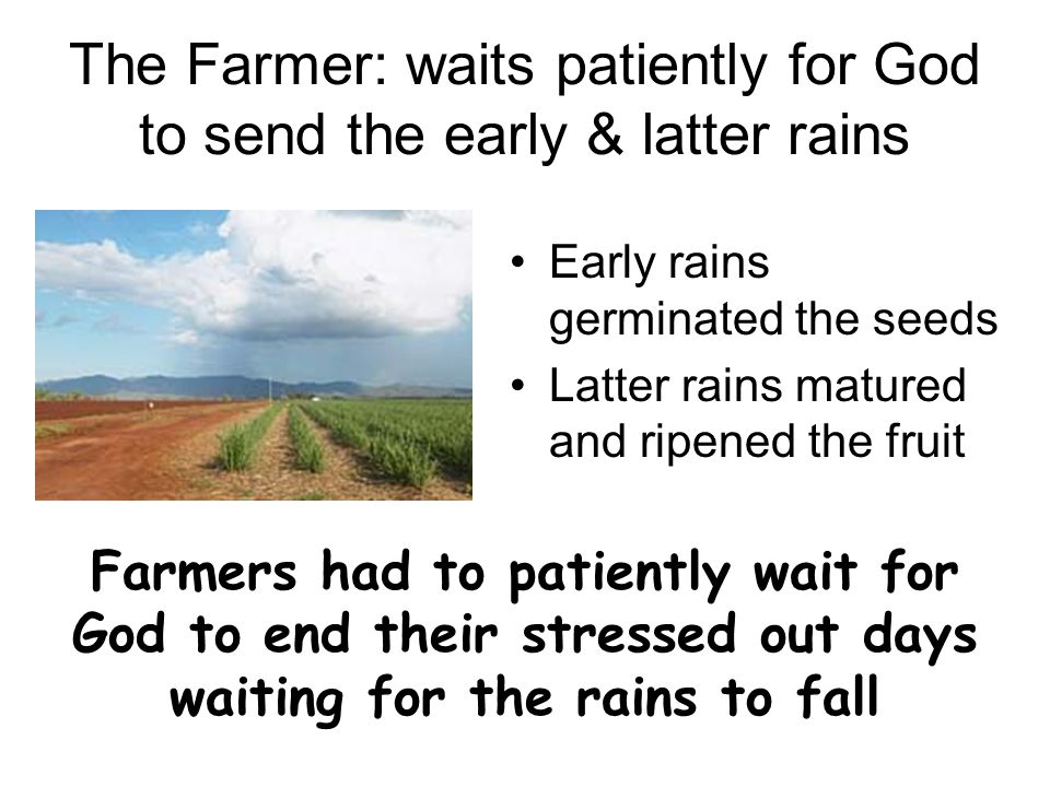 The Farmer: waits patiently for God to send the early & latter rains Early rains germinated the seeds Latter rains matured and ripened the fruit Farmers had to patiently wait for God to end their stressed out days waiting for the rains to fall