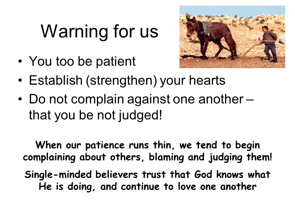 Warning for us You too be patient Establish (strengthen) your hearts Do not complain against one another – that you be not judged.