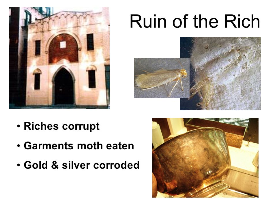 Ruin of the Rich Riches corrupt Garments moth eaten Gold & silver corroded
