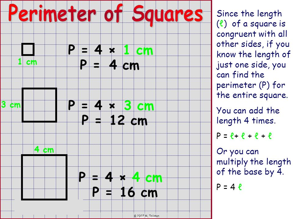 © 2007 M. Tallman Since the length () of a square is congruent with all other sides, if you know the length of just one side, you can find the perimet