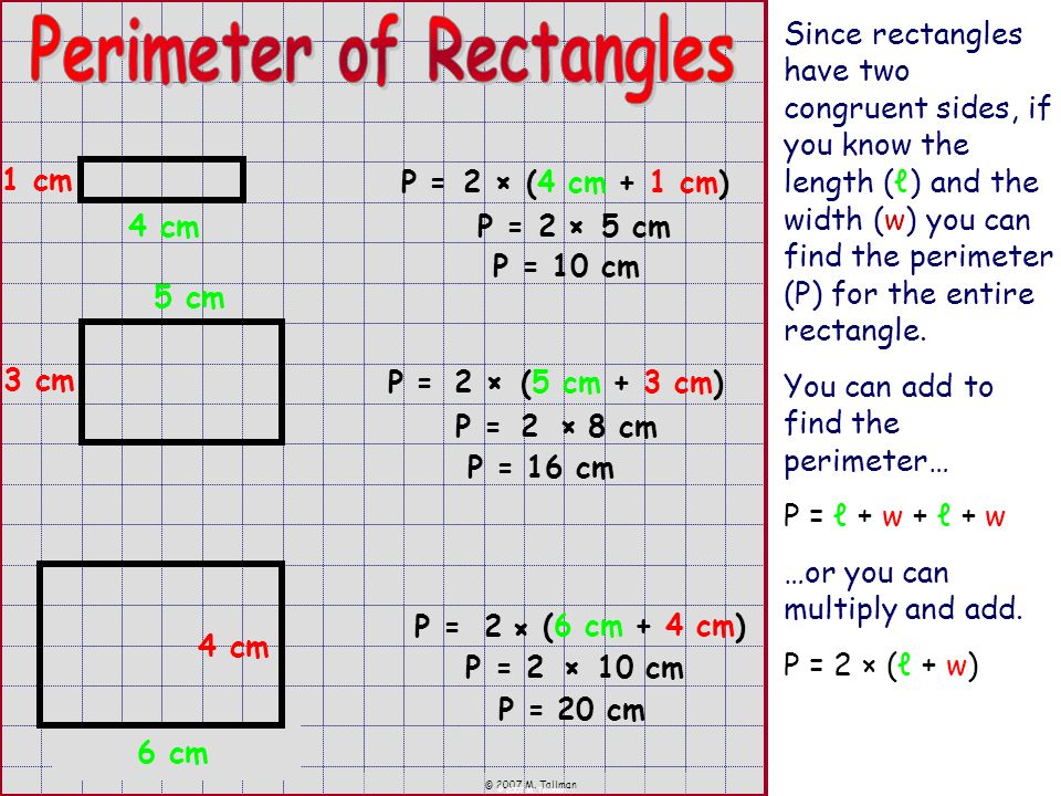 © 2007 M. Tallman Since rectangles have two congruent sides, if you know the length () and the width (w) you can find the perimeter (P) for the entire