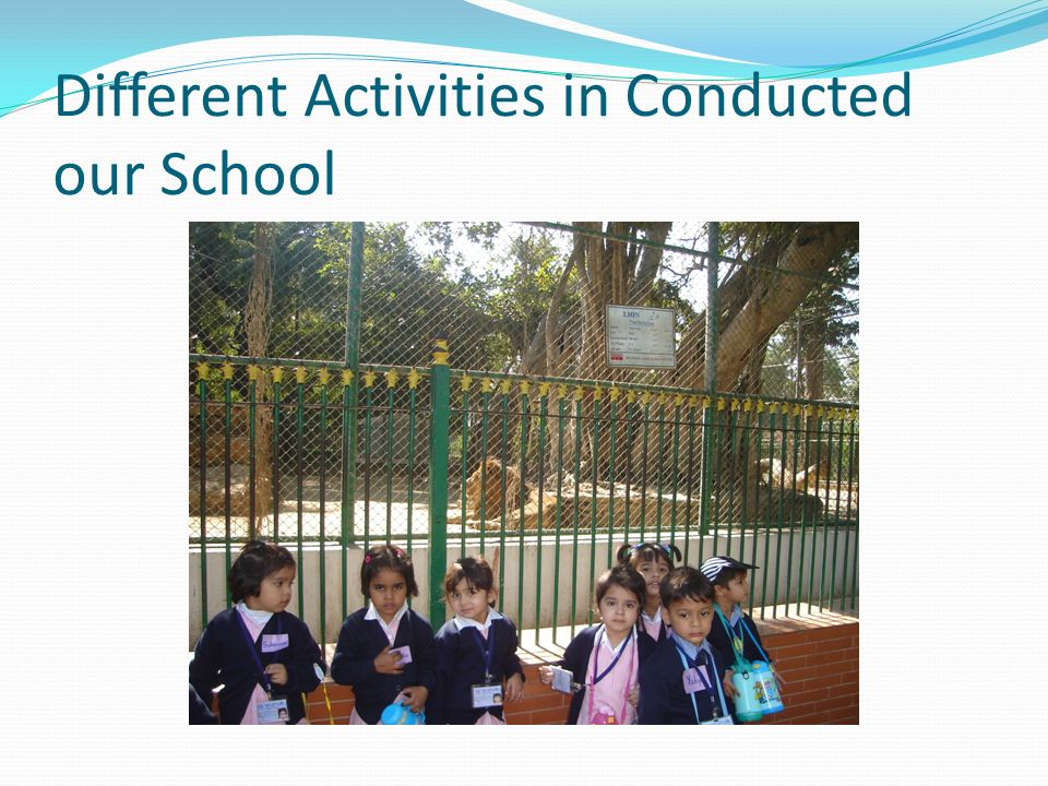 Different Activities in Conducted our School