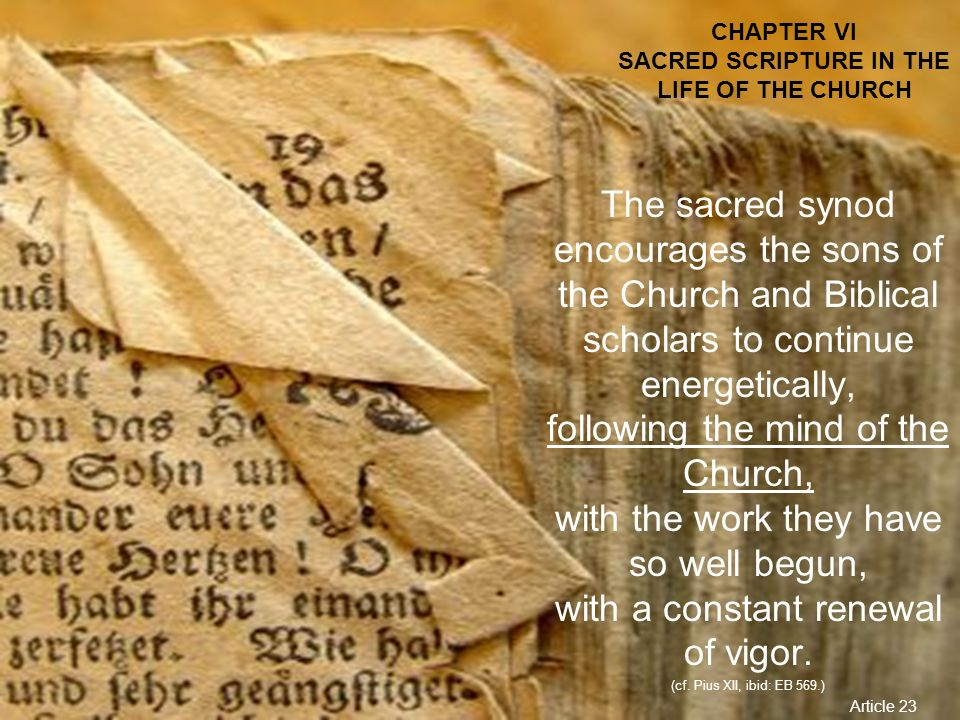CHAPTER VI SACRED SCRIPTURE IN THE LIFE OF THE CHURCH The sacred synod encourages the sons of the Church and Biblical scholars to continue energetical