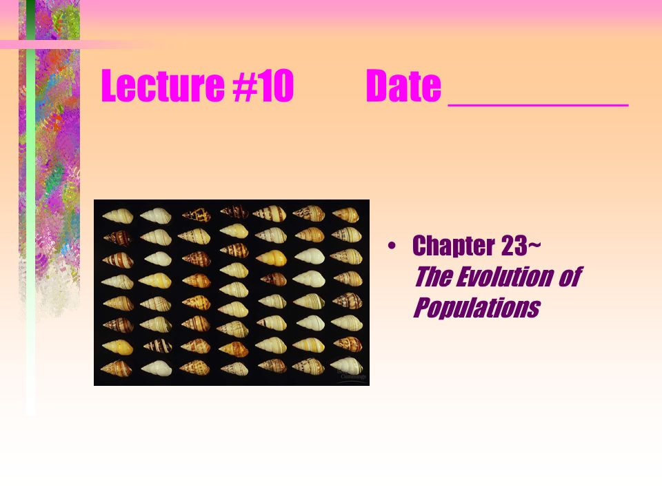 Population genetics Population: a localized group of individuals belonging to the same species Species: a group of populations whose individuals have the potential to interbreed and produce fertile offspring Gene pool: the total aggregate of genes in a population at any one time Population genetics: the study of genetic changes in populations Modern synthesis/neo-Darwinism Individuals are selected, but populations evolve.