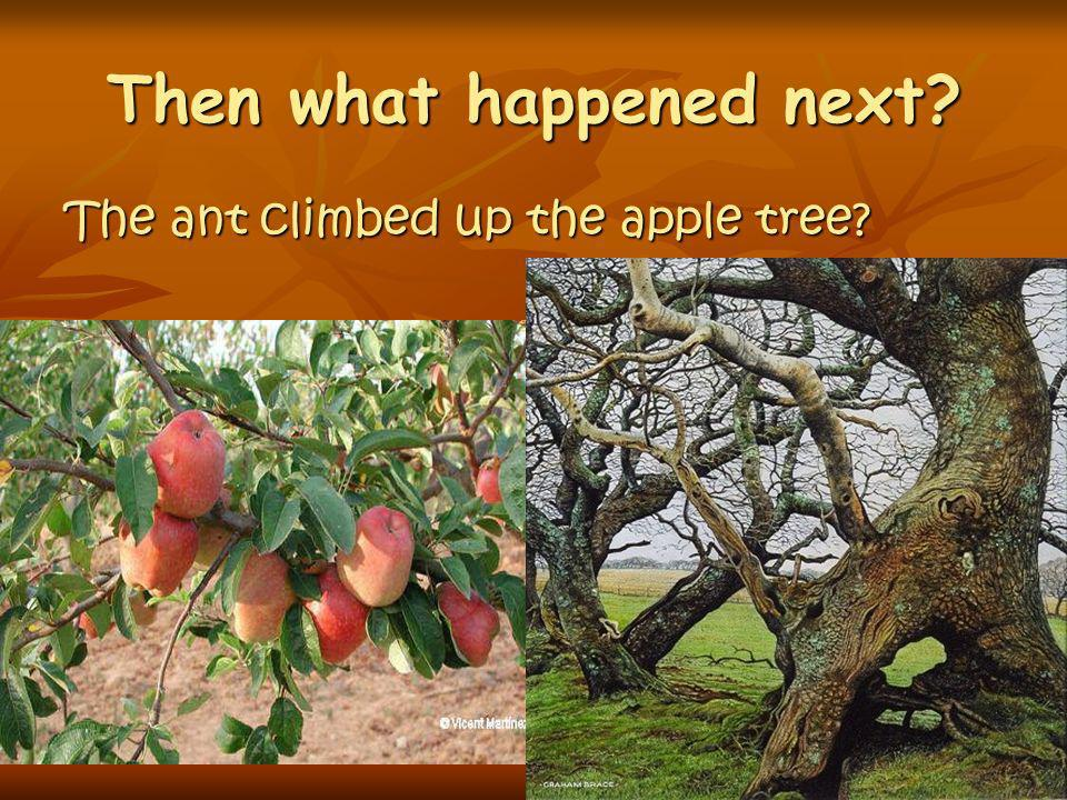 Then what happened next? The ant climbed up the apple tree?
