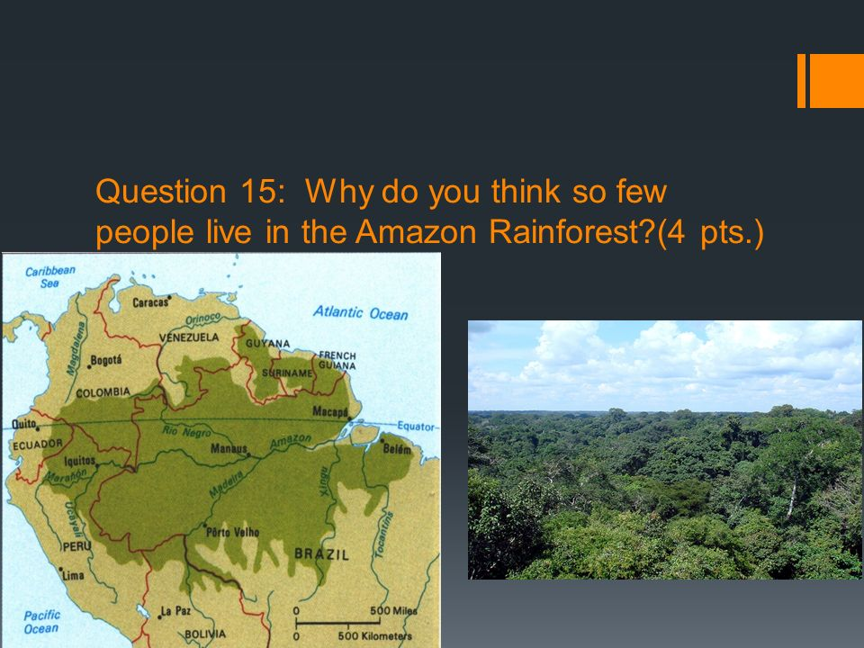 Question 15: Why do you think so few people live in the Amazon Rainforest?(4 pts.)