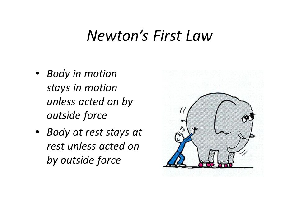 Newtons Second Law Force of an object = mass (weight) x acceleration or deceleration (change in velocity) Major factor is velocity Speed Kills