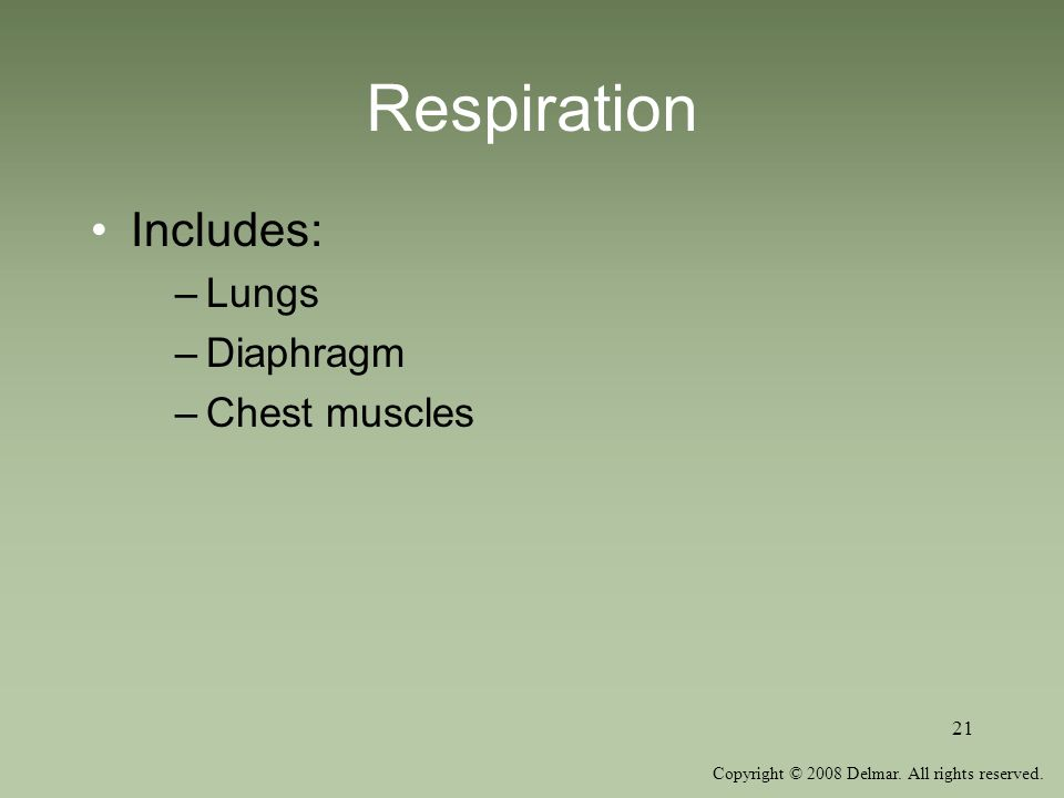 Copyright © 2008 Delmar. All rights reserved. 21 Respiration Includes: –Lungs –Diaphragm –Chest muscles