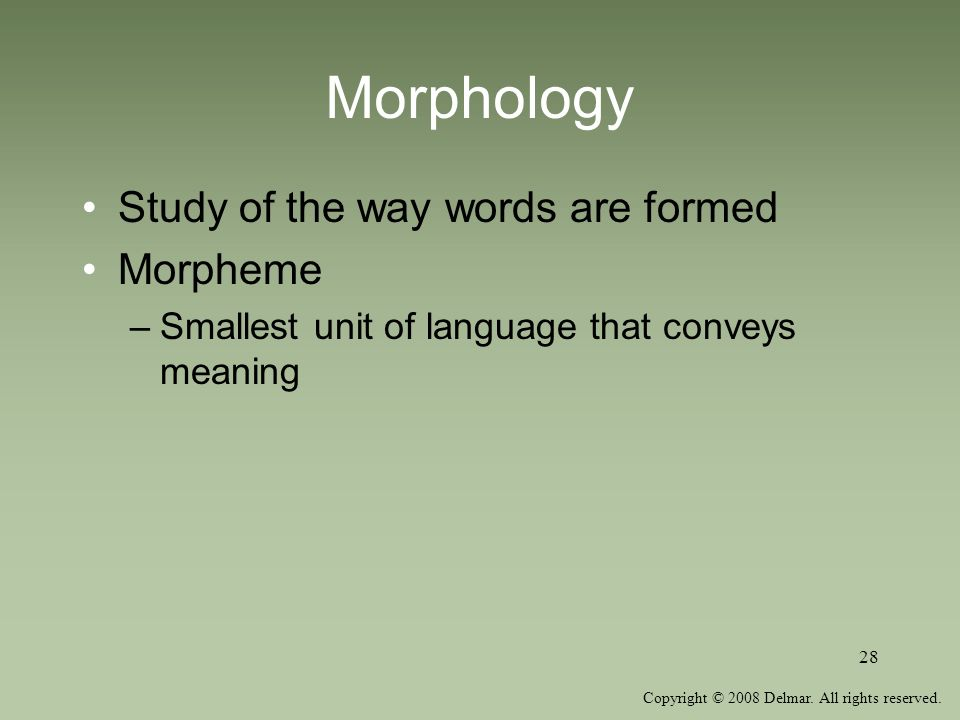 Copyright © 2008 Delmar. All rights reserved. 28 Morphology Study of the way words are formed Morpheme –Smallest unit of language that conveys meaning
