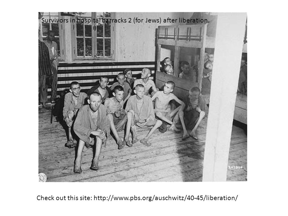 Survivors in hospital barracks 2 (for Jews) after liberation. Check out this site: http://www.pbs.org/auschwitz/40-45/liberation/