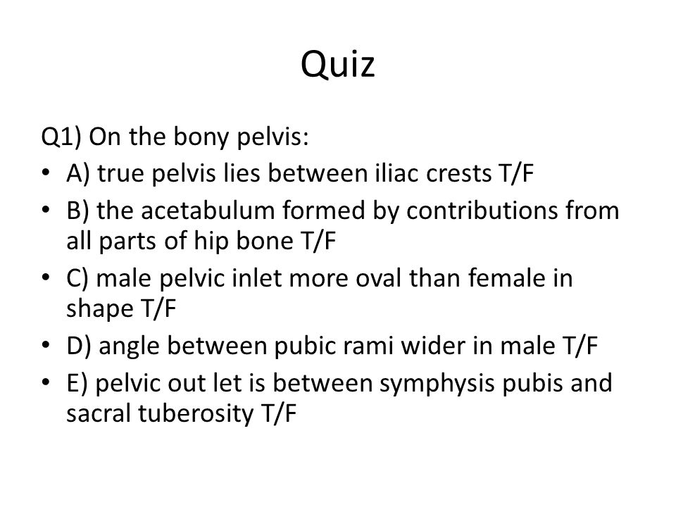 Quiz Q1) On the bony pelvis: A) true pelvis lies between iliac crests T/F B) the acetabulum formed by contributions from all parts of hip bone T/F C)