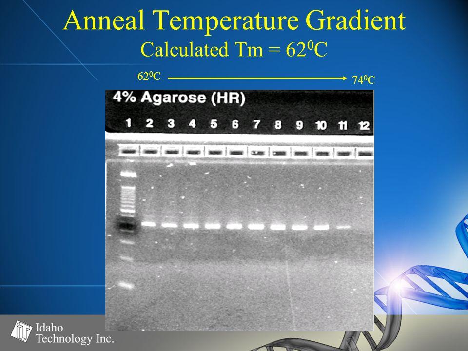 Anneal Temperature Gradient Calculated Tm = 62 0 C 62 0 C 74 0 C