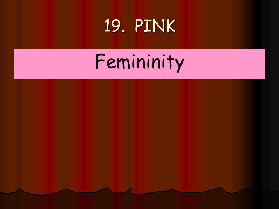 19. PINK Femininity