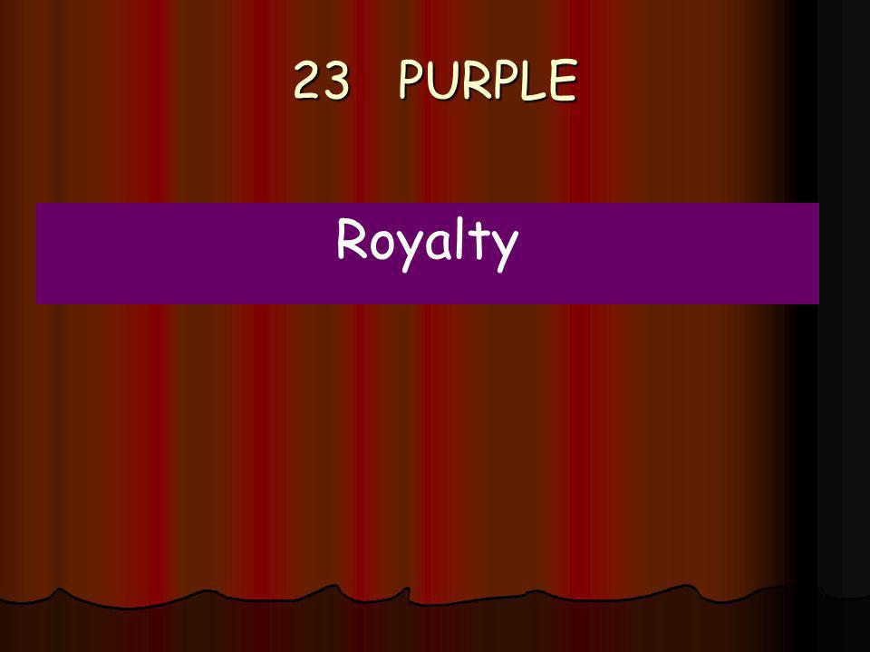 23 PURPLE Royalty