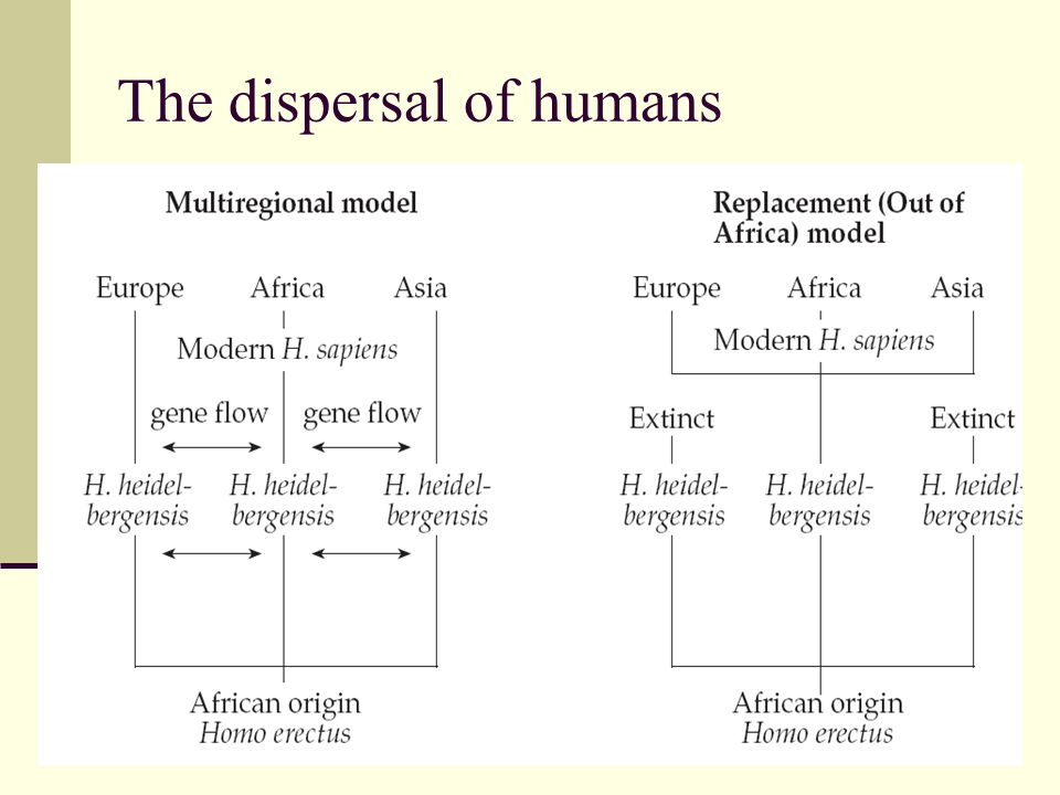 The dispersal of humans