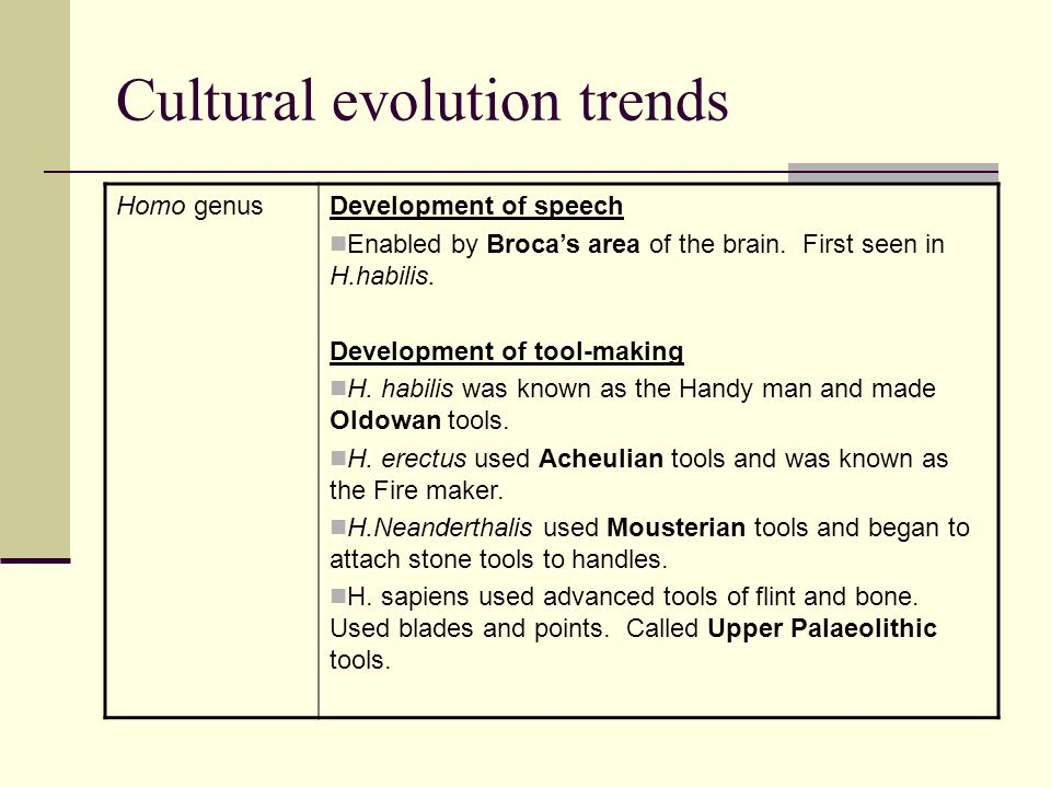 Cultural evolution trends Homo genusDevelopment of group living and culture H.