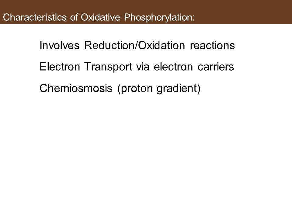 Characteristics of Oxidative Phosphorylation: Involves Reduction/Oxidation reactions Electron Transport via electron carriers Chemiosmosis (proton gra