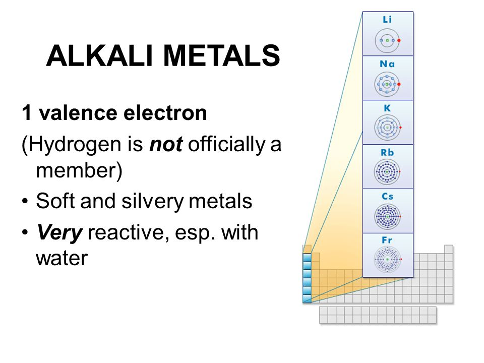 ALKALI METALS 1 valence electron (Hydrogen is not officially a member) Soft and silvery metals Very reactive, esp. with water