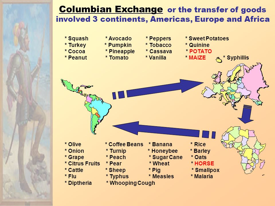 European explore EFFECTS Europeans reach and settle Americas Expanded knowledge of world geography Growth of trade, mercantilism and capitalism Indian