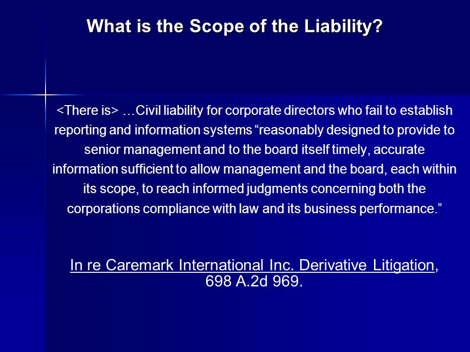 What is the Scope of the Liability? …Civil liability for corporate directors who fail to establish reporting and information systems reasonably design